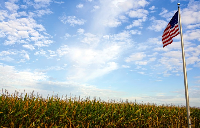 American flag in farmer's field