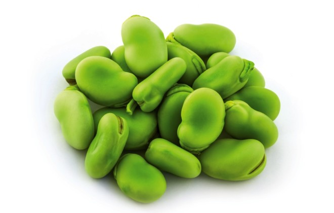 Broad bean green seeds lat. Visia faba. Fava bean