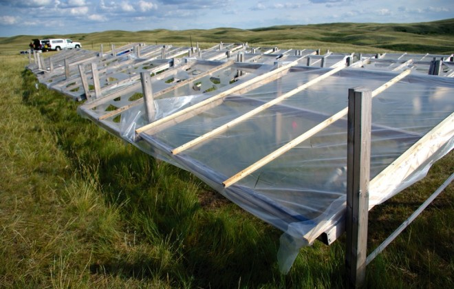 Studies in three Prairie provinces used covers to block rainfall and simulate various levels of drought.