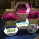 "Robotica's indoor farming modules have style-conscious Italian consumers in mind. ""Our vision is to grow food on every desk in every house,"" its builders say."