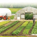 Importing the LEAN philosophy to your farm