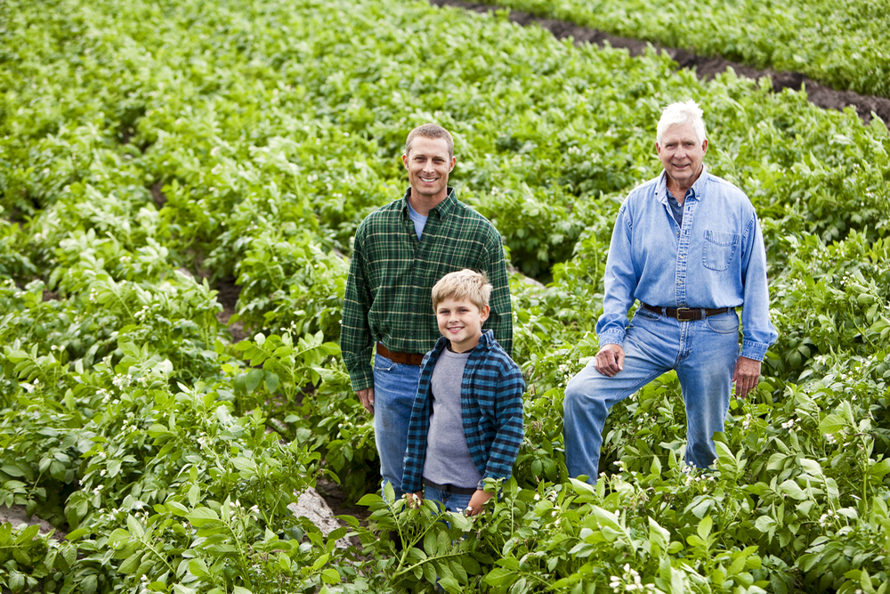 Are you confident with the direction you're getting from advisors as you inch closer towards a farm transition?