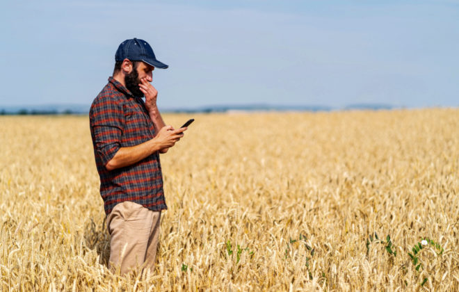 Side view of a farmer using smart phone in field