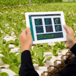 Investing in agri-food technology