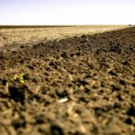 Where Ontario's soil health strategy falls short