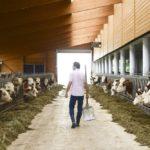 Farm CEO: The complete farm executive