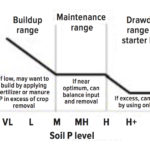 "The long-term strategy for P management relies on building, maintaining or depleting soil P, based on soil test P concentration. Medium (M) would be around 15 ppm. High (H) would be around 30 ppm. Source: ""4R Management of Phosphorus Fertilizer in the Northern Great Plains: A Review of the Scientific Literature,"" by Cindy Grant and Don Flaten."