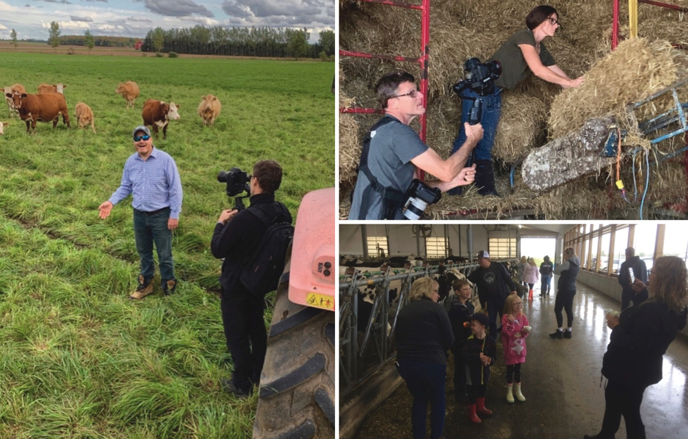 "Consumers were stuck at home, so Dufferin Ontario farmers used technology to bring the farm to their screens. It took time, effort and a bit of courage, but the message was clear: ""It's important to support local farm communities."""